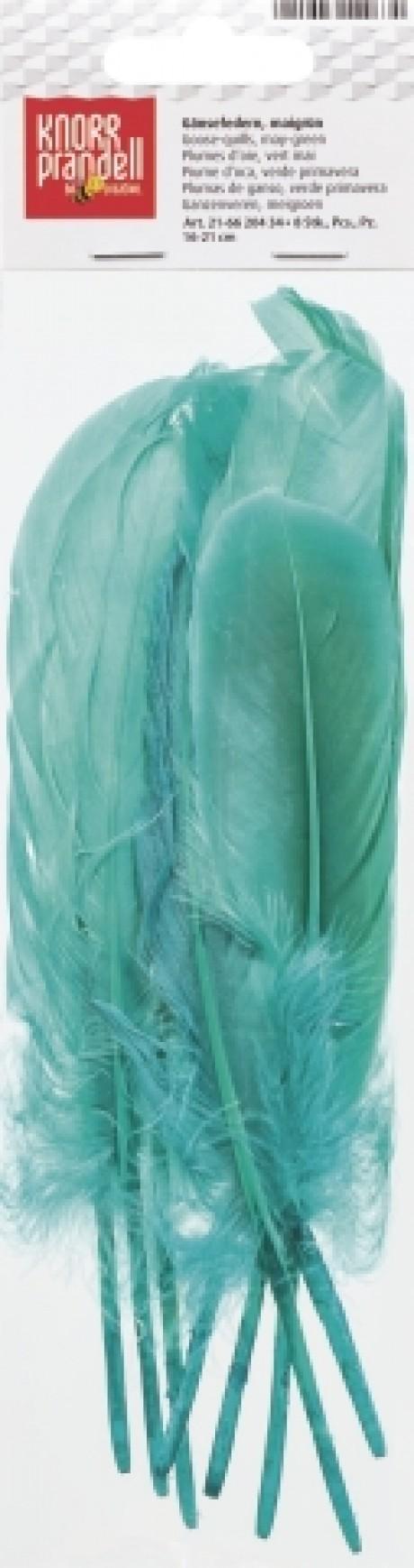 Žąsų plunksnos art. 6620434