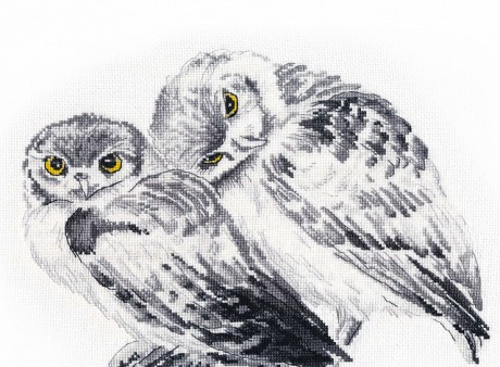 """Oven siuvinėjimo rinkinys """"Owls in love"""""""